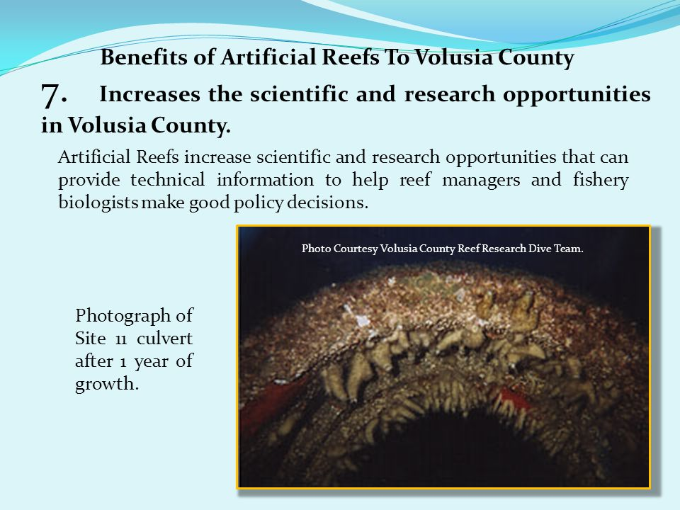 Benefits of Artificial Reefs To Volusia County 7. Increases the scientific and research opportunities in Volusia County. Artificial Reefs increase sci