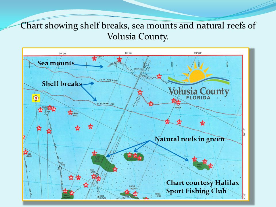 Chart showing shelf breaks, sea mounts and natural reefs of Volusia County. Natural reefs in green Shelf breaks Sea mounts Chart courtesy Halifax Spor