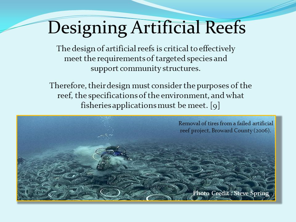 Designing Artificial Reefs The design of artificial reefs is critical to effectively meet the requirements of targeted species and support community s