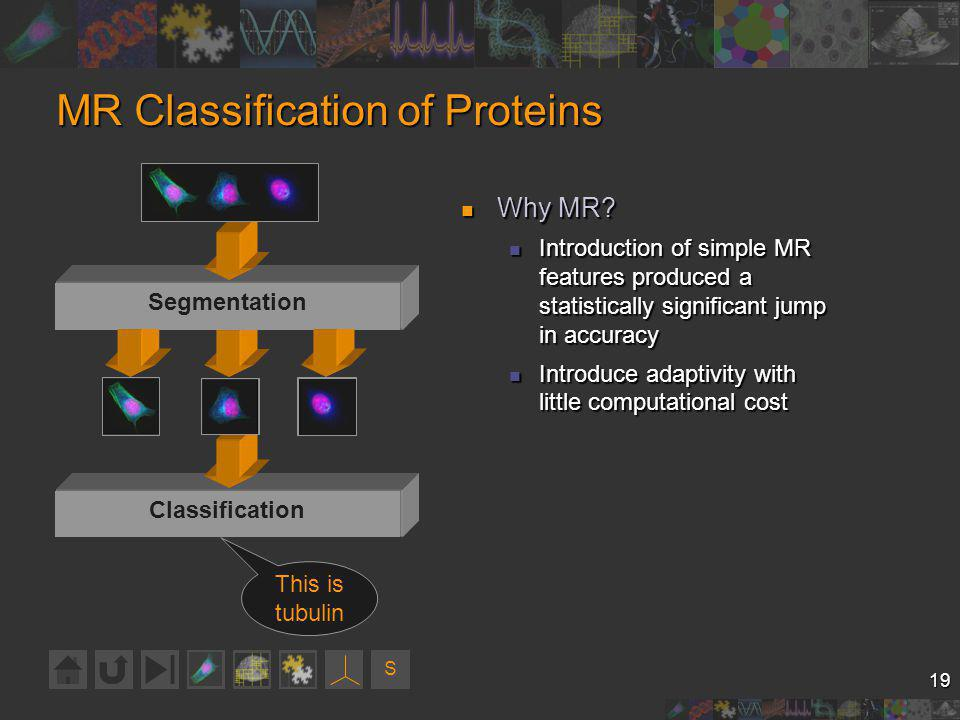 S 19 Knowledge Extraction MR Classification of Proteins Why MR.