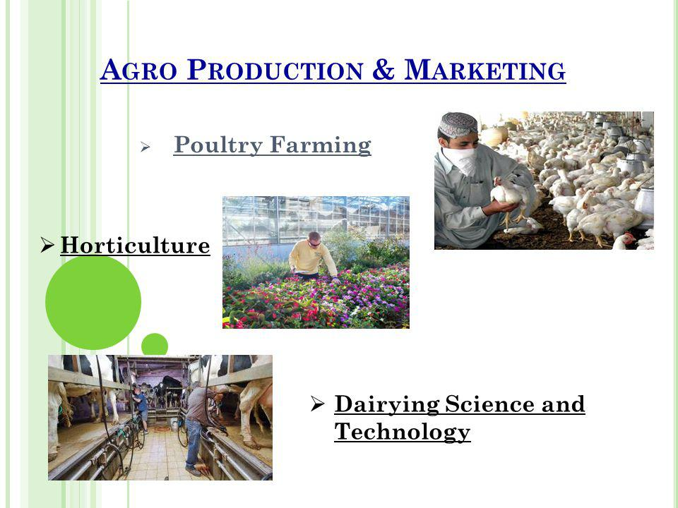 A GRO P RODUCTION & M ARKETING Poultry Farming Horticulture Dairying Science and Technology