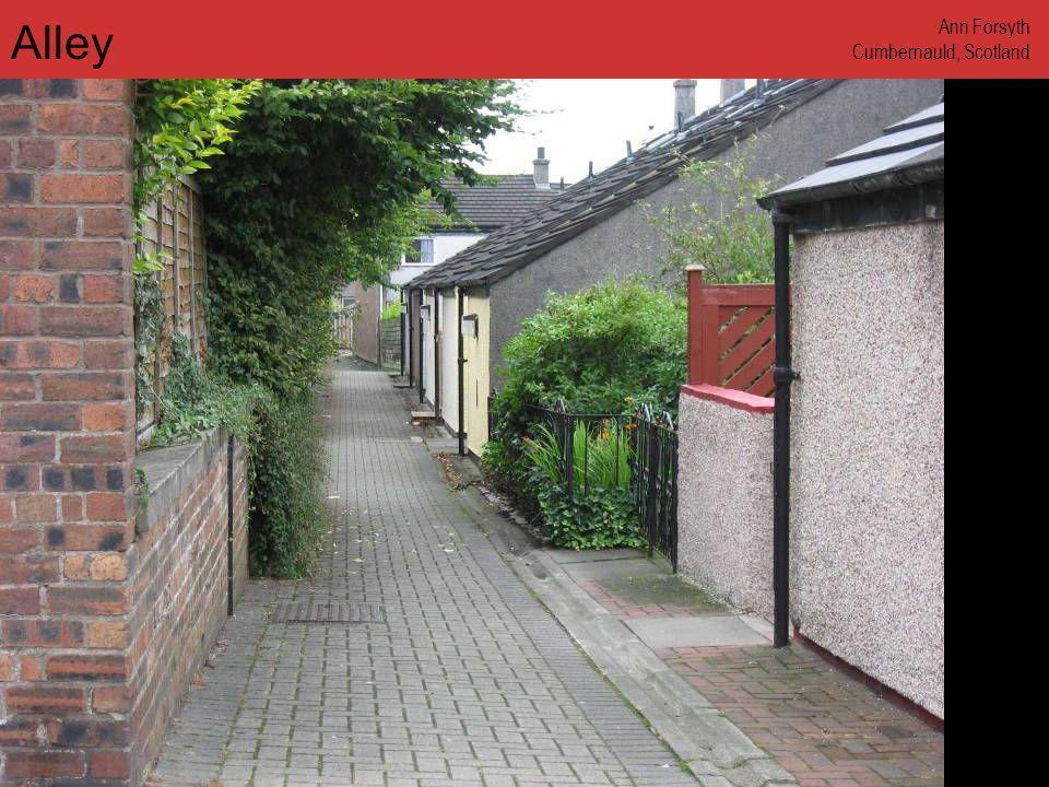 www.annforsyth.net Alley Ann Forsyth Cumbernauld, Scotland