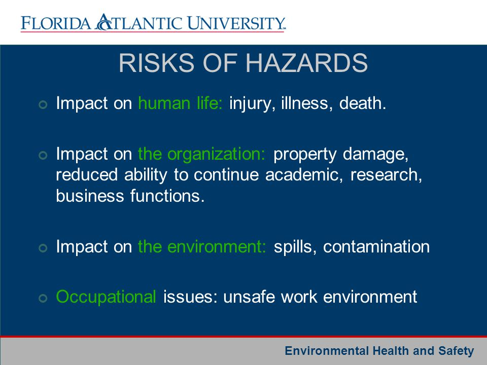 Environmental Health and Safety RISKS OF HAZARDS Impact on human life: injury, illness, death. Impact on the organization: property damage, reduced ab