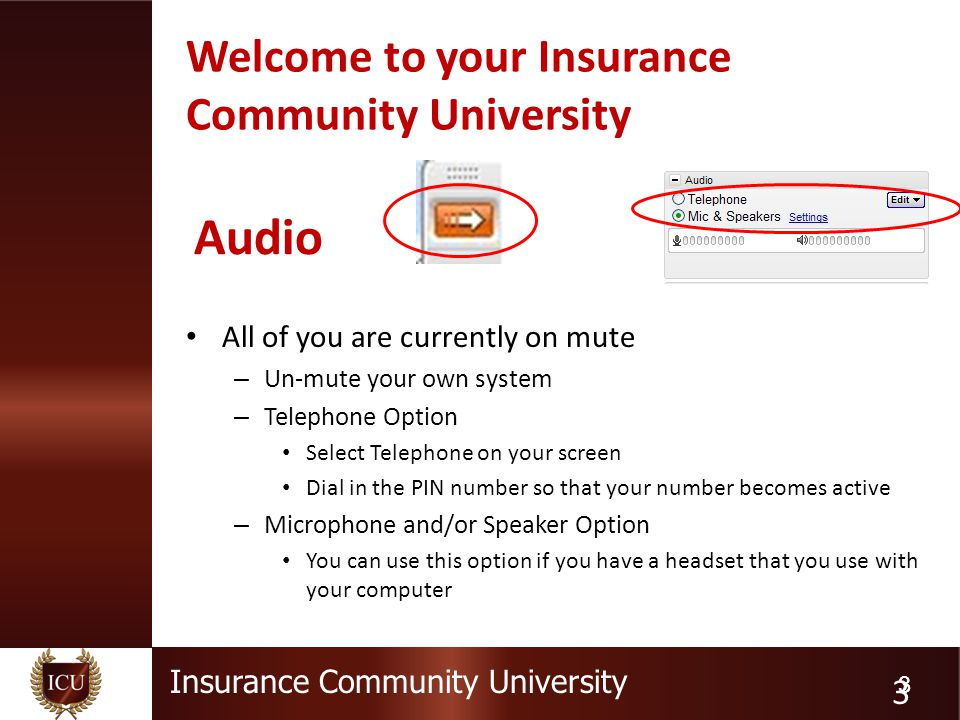 Insurance Community University 3 Welcome to your Insurance Community University All of you are currently on mute – Un-mute your own system – Telephone Option Select Telephone on your screen Dial in the PIN number so that your number becomes active – Microphone and/or Speaker Option You can use this option if you have a headset that you use with your computer 3 Audio