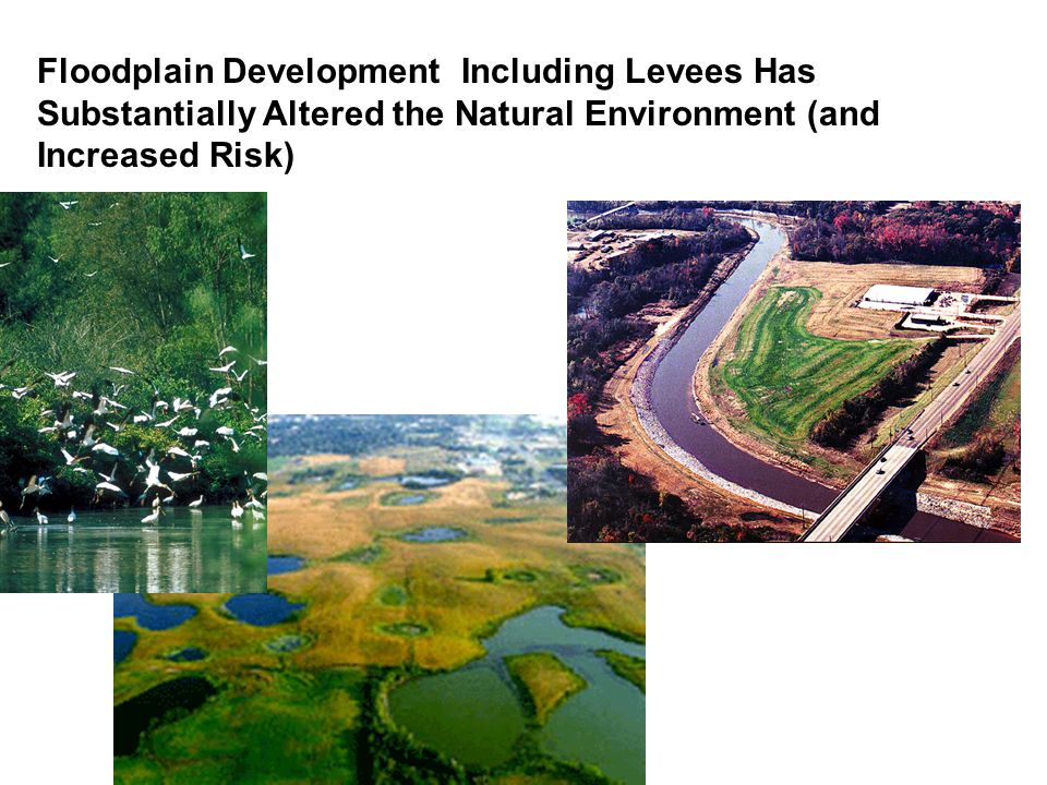 Floodplain Development Including Levees Has Substantially Altered the Natural Environment (and Increased Risk)