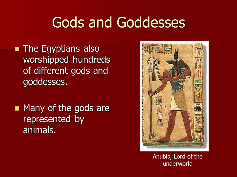 Gods and Goddesses The Egyptians also worshipped hundreds of different gods and goddesses. The Egyptians also worshipped hundreds of different gods an
