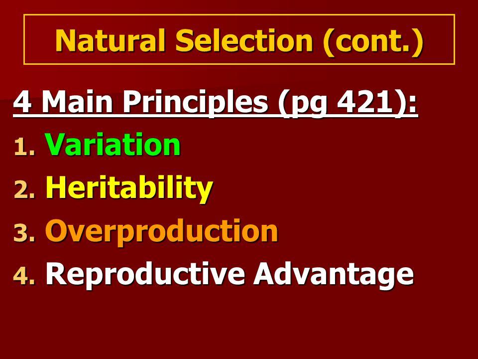 Natural Selection (cont.) 4 Main Principles (pg 421): 1.