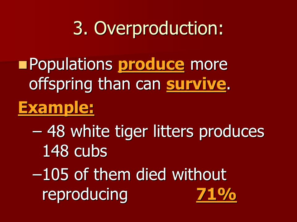 3. Overproduction: Populations produce more offspring than can survive. Populations produce more offspring than can survive.Example: – 48 white tiger