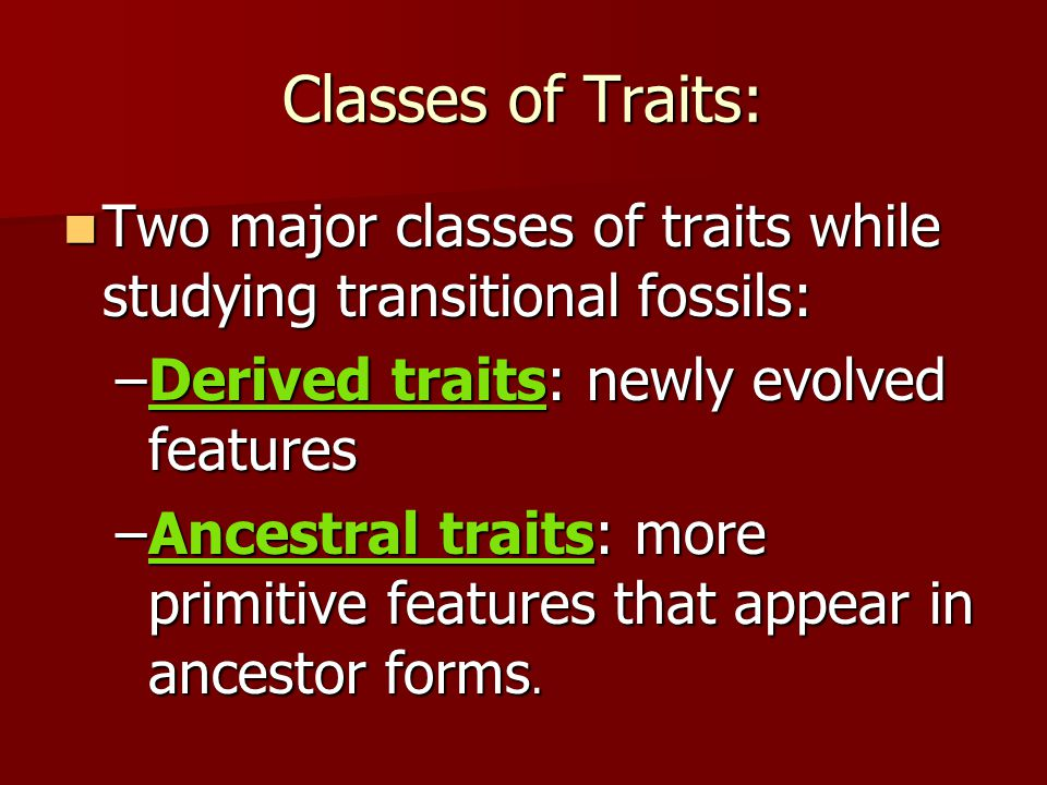Classes of Traits: Two major classes of traits while studying transitional fossils: Two major classes of traits while studying transitional fossils: –