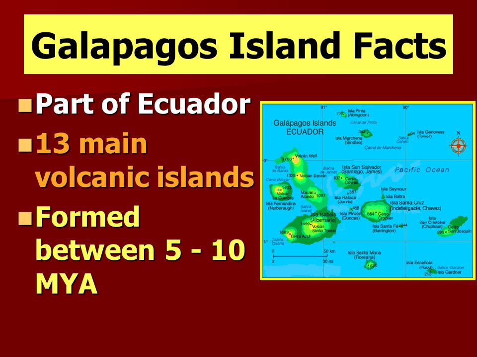 Galapagos Island Facts Part of Ecuador Part of Ecuador 13 main volcanic islands 13 main volcanic islands Formed between 5 - 10 MYA Formed between 5 -