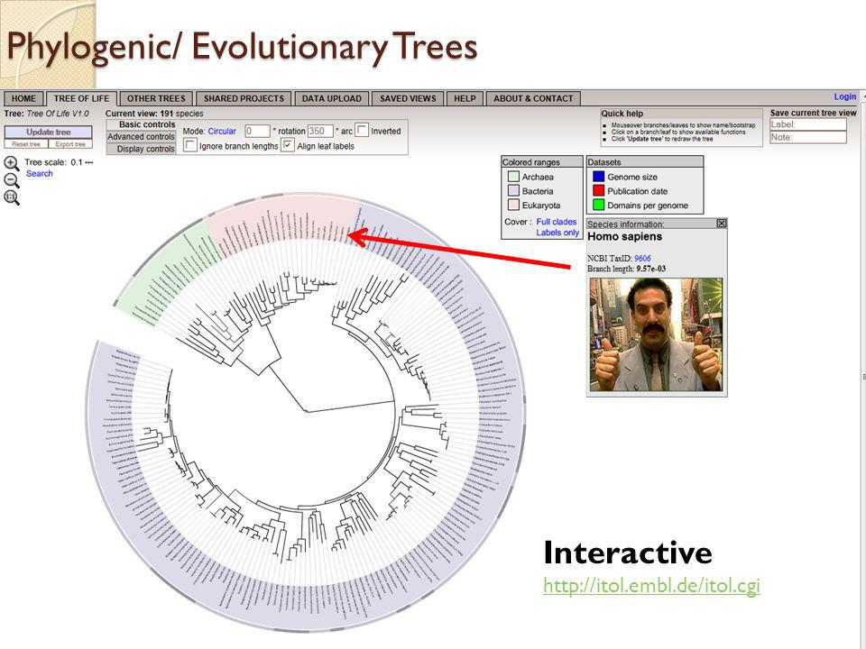 Phylogenic/ Evolutionary Trees Interactive http://itol.embl.de/itol.cgi