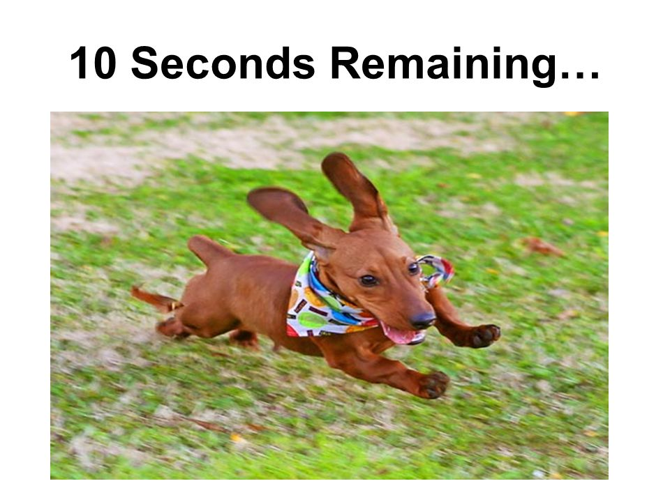 10 Seconds Remaining…