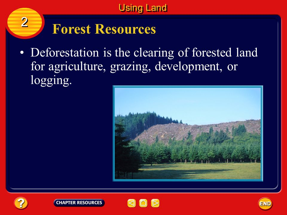 Forest Resources Approximately one-fourth of the land area on Earth is covered by forest. The distribution of Earth's forest according to region is sh
