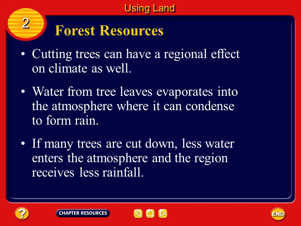 Forest Resources Tropical rain forest contain diverse populations of plants and animals that don't live in other places. Some people also worry that r