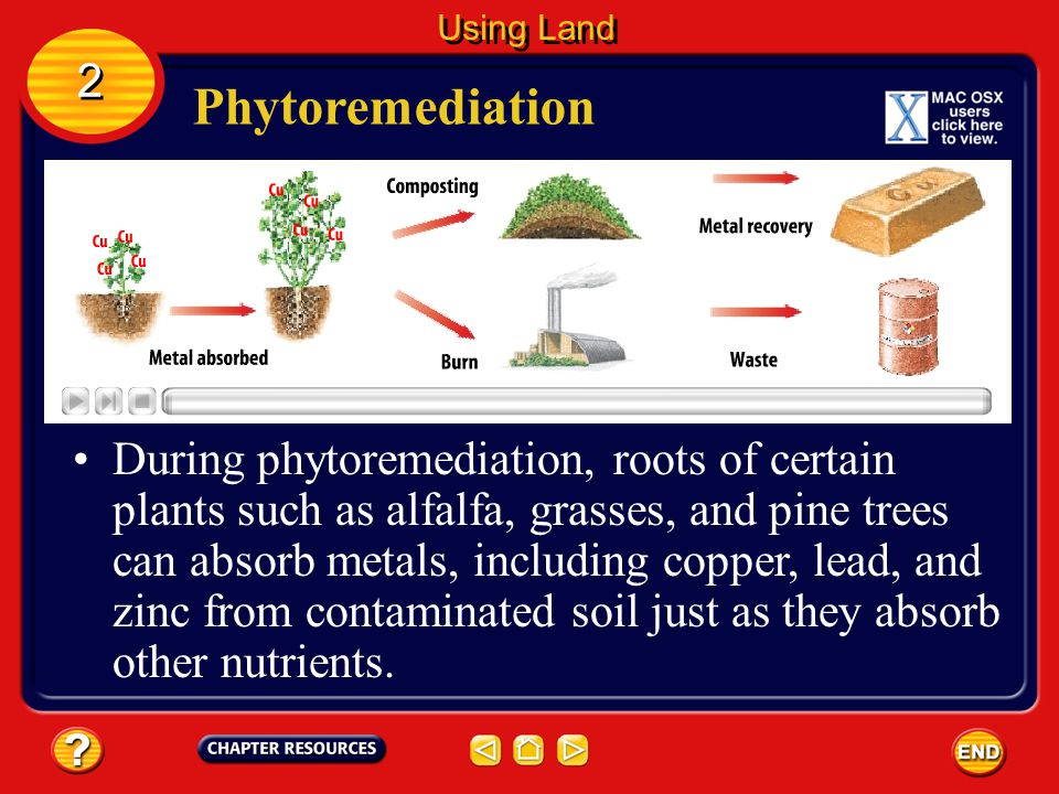Phytoremediation Hazardous substances can contaminate soil. 2 2 Using Land Some plants can help fix this problem in a method called phytoremediation (