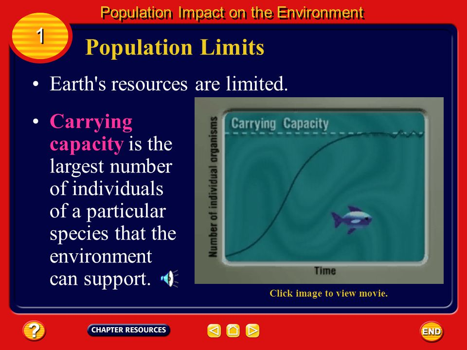 Population Limits Population size depends on the amount of available resources and how members of the population use them. 1 1 Population Impact on th