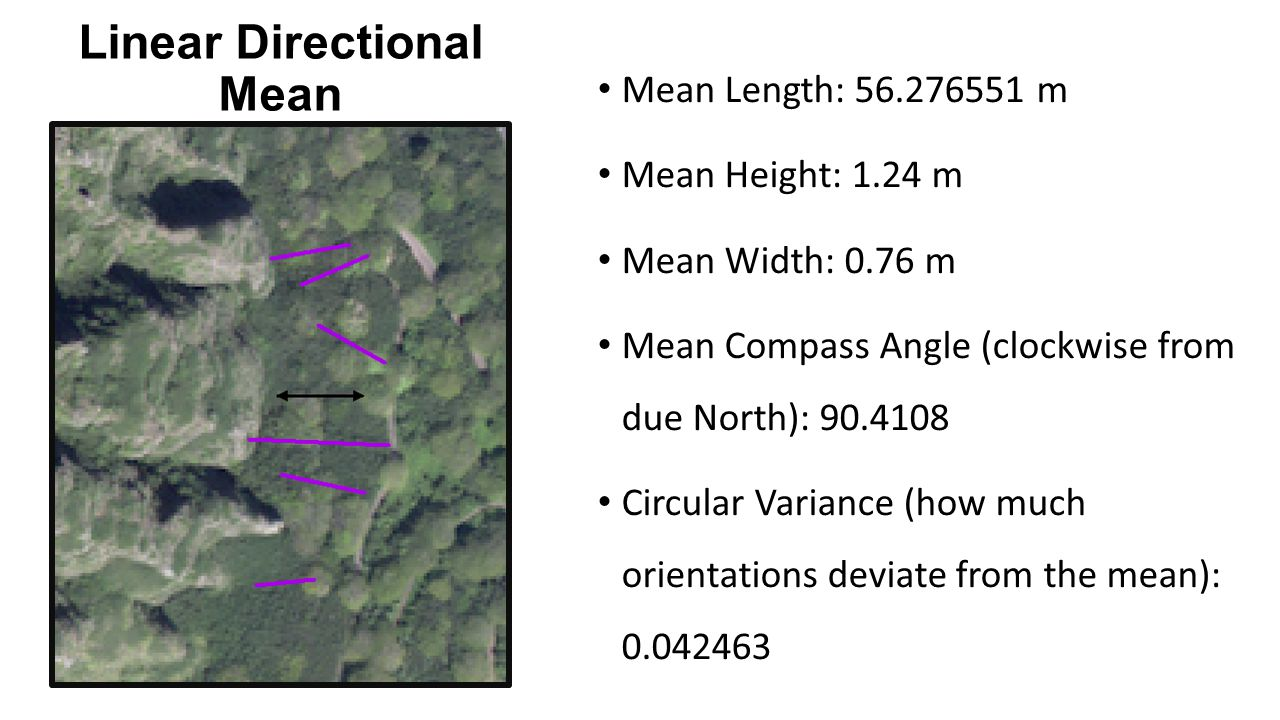 Linear Directional Mean Mean Length: 56.276551 m Mean Height: 1.24 m Mean Width: 0.76 m Mean Compass Angle (clockwise from due North): 90.4108 Circular Variance (how much orientations deviate from the mean): 0.042463