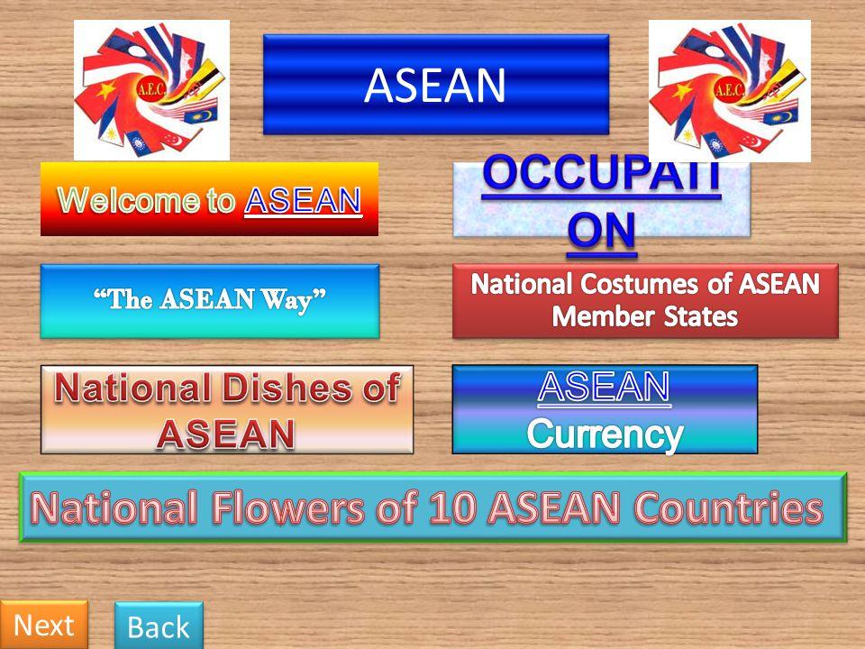 The five-petaled Bunga raya (Hibiscus Rosa- Sinensis) has been Malaysias national flower since 1960.