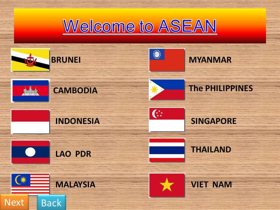BRUNEI CAMBODIA INDONESIA LAO PDR MALAYSIA MYANMAR The PHILIPPINES SINGAPORE THAILAND VIET NAM Next Back