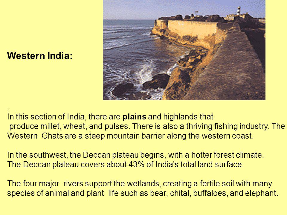 Western India:. In this section of India, there are plains and highlands that produce millet, wheat, and pulses. There is also a thriving fishing indu