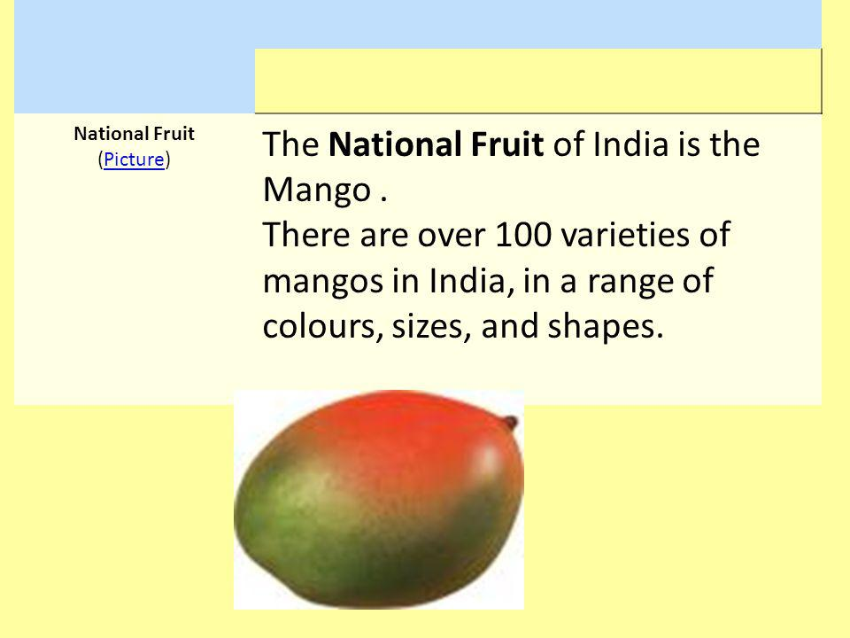 National Fruit (Picture)Picture The National Fruit of India is the Mango. There are over 100 varieties of mangos in India, in a range of colours, size