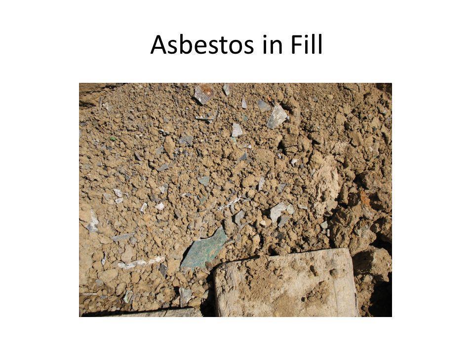 Asbestos in Fill