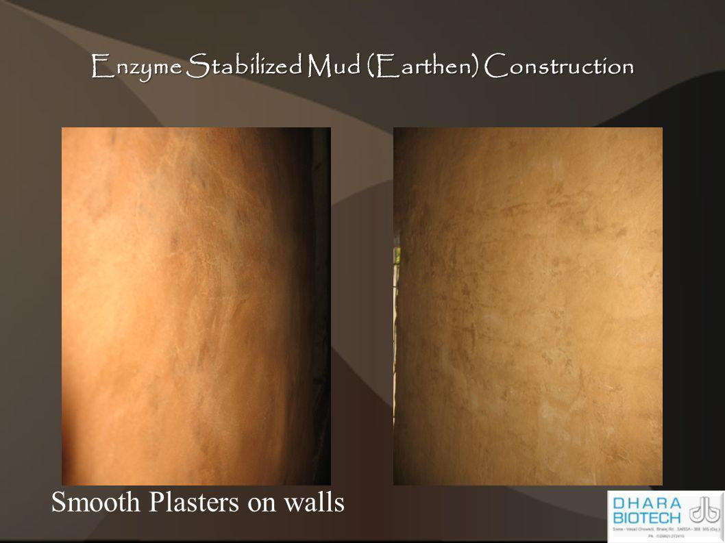 Enzyme Stabilized Mud (Earthen) Construction Smooth Plasters on walls
