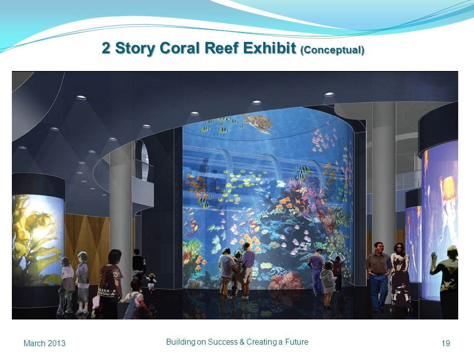 Building on Success & Creating a Future 19 2 Story Coral Reef Exhibit (Conceptual) March 2013