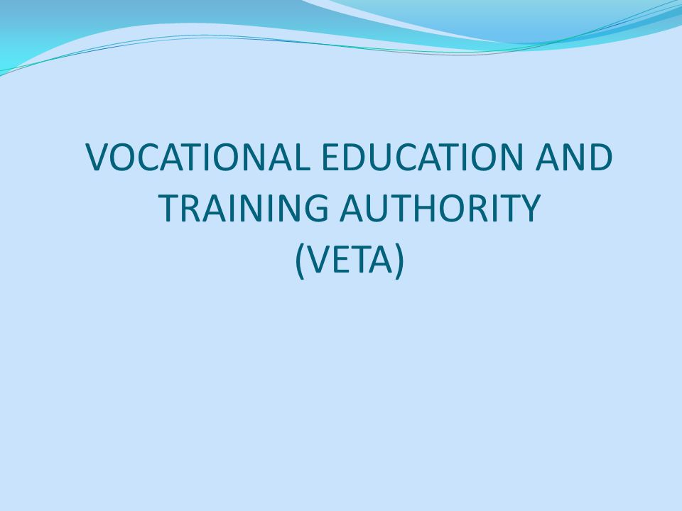 TEACHERS (INSTRUCTORS) There are about 40 teachers, most of them are permanent VETA employees