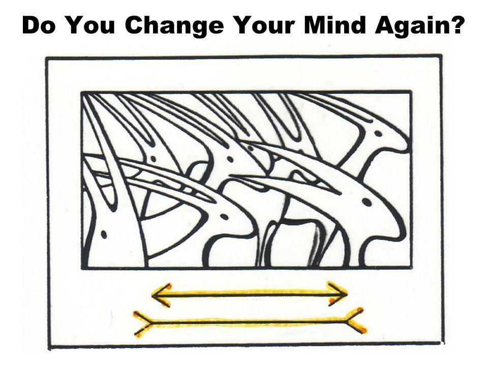 Do You Change Your Mind?