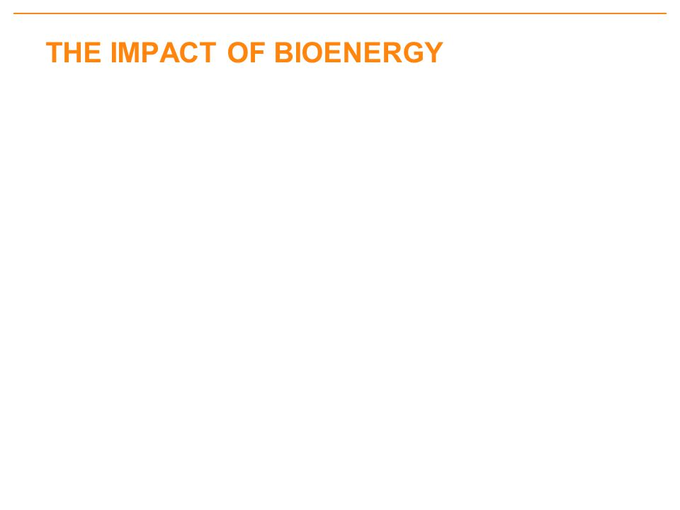 THE IMPACT OF BIOENERGY