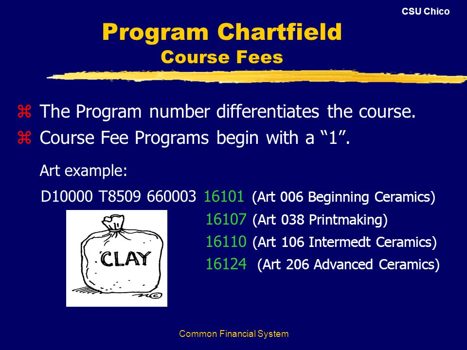 CSU Chico Common Financial System Program Chartfield Course Fees z The Program number differentiates the course. z Course Fee Programs begin with a 1.