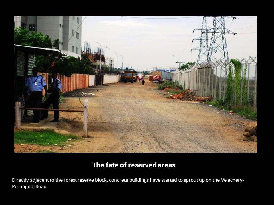 Directly adjacent to the forest reserve block, concrete buildings have started to sprout up on the Velachery- Perungudi Road. The fate of reserved are