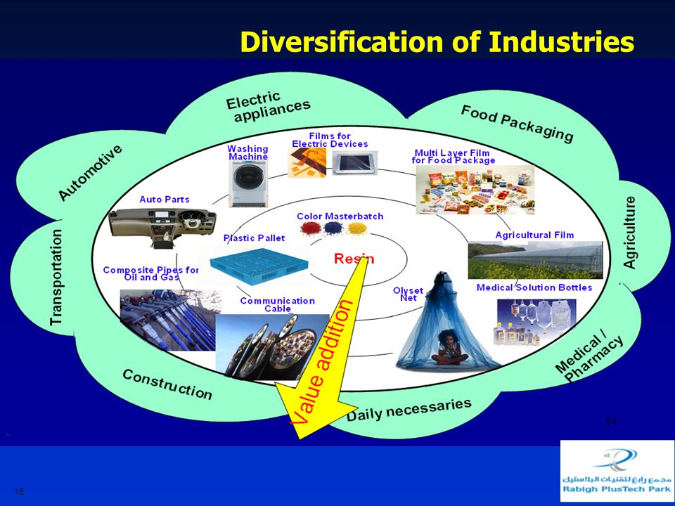 15 Diversification of Industries