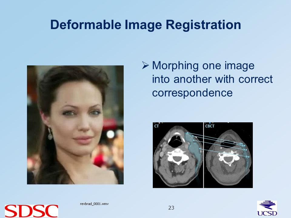 Deformable Image Registration 23 Morphing one image into another with correct correspondence