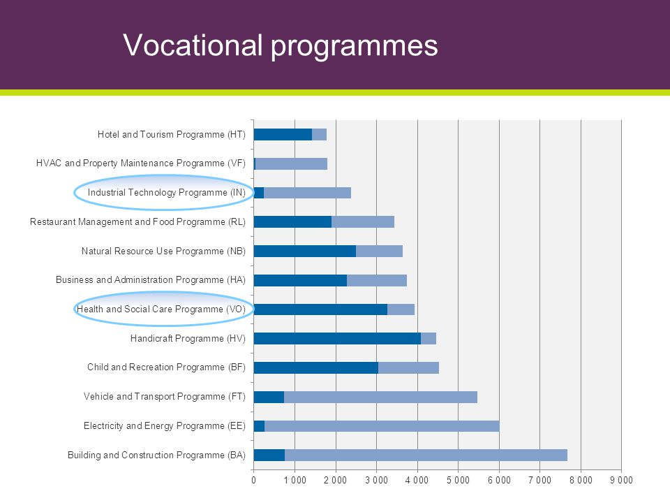Vocational programmes