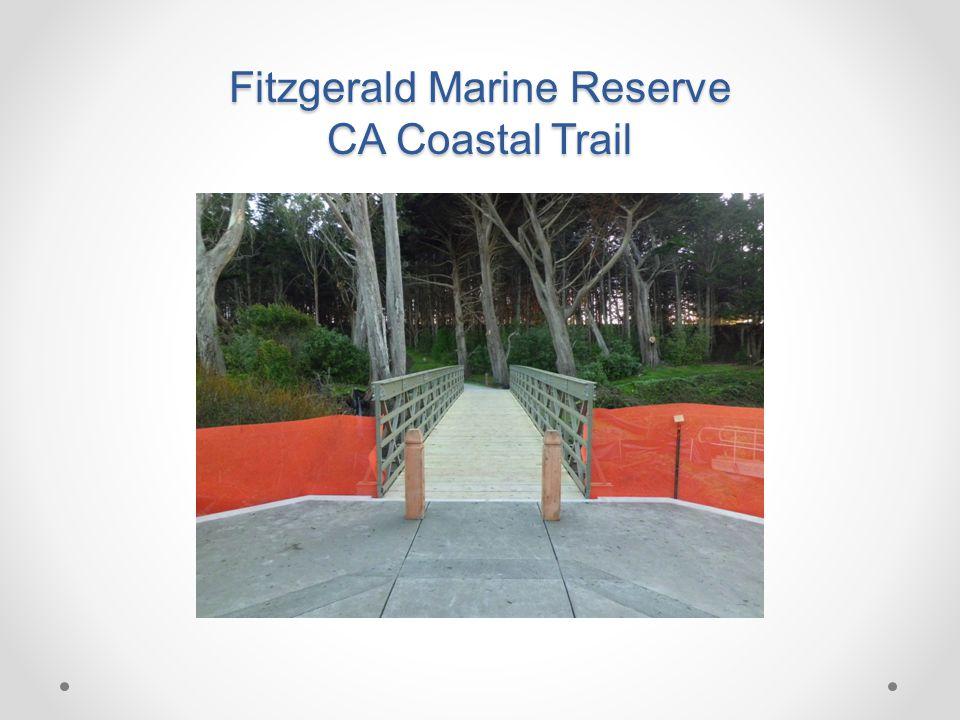 Fitzgerald Marine Reserve CA Coastal Trail