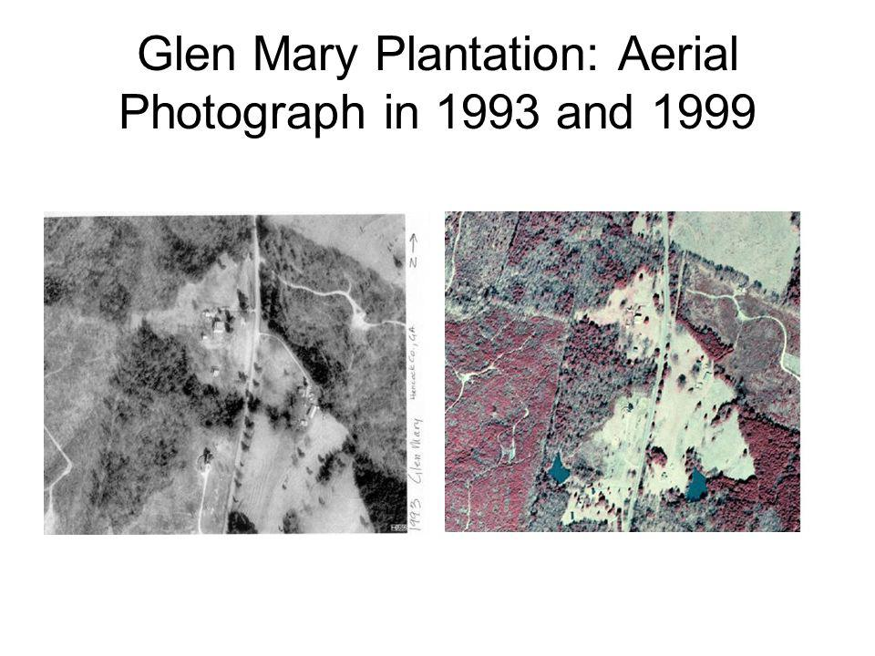 Glen Mary Plantation: Aerial Photograph in 1993 and 1999