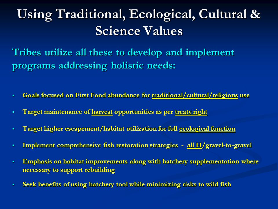 Using Traditional, Ecological, Cultural & Science Values Tribes utilize all these to develop and implement programs addressing holistic needs: Goals focused on First Food abundance for traditional/cultural/religious use Goals focused on First Food abundance for traditional/cultural/religious use Target maintenance of harvest opportunities as per treaty right Target maintenance of harvest opportunities as per treaty right Target higher escapement/habitat utilization for full ecological function Target higher escapement/habitat utilization for full ecological function Implement comprehensive fish restoration strategies - all H/gravel-to-gravel Implement comprehensive fish restoration strategies - all H/gravel-to-gravel Emphasis on habitat improvements along with hatchery supplementation where necessary to support rebuilding Emphasis on habitat improvements along with hatchery supplementation where necessary to support rebuilding Seek benefits of using hatchery tool while minimizing risks to wild fish Seek benefits of using hatchery tool while minimizing risks to wild fish