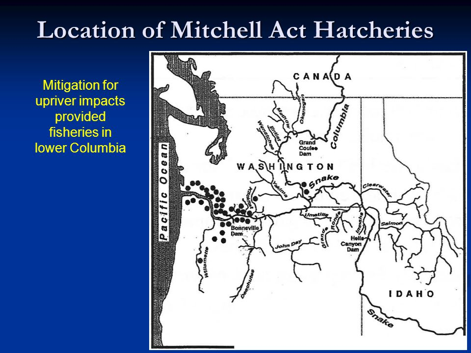 Location of Mitchell Act Hatcheries Mitigation for upriver impacts provided fisheries in lower Columbia