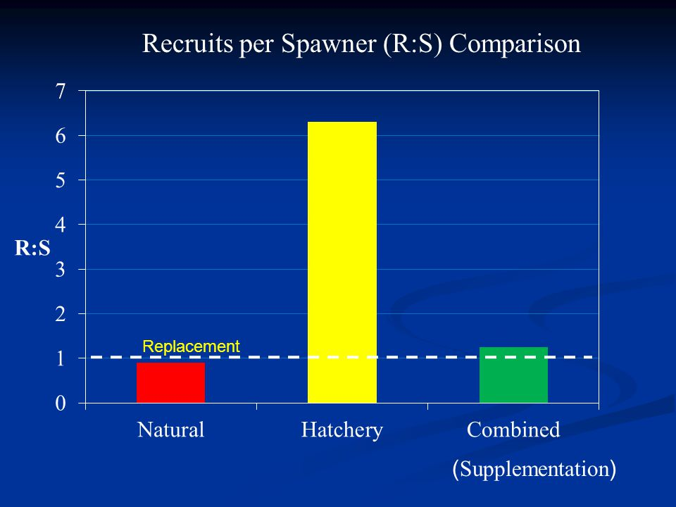 ( Supplementation ) Recruits per Spawner (R:S) Comparison Replacement