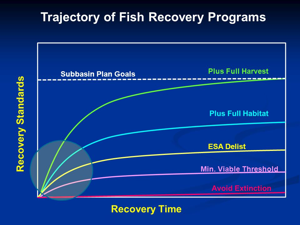 Fish Recovery Levels/Standards Recovery Standard Objectives Achieved Numeric Example Natural Production Harvest 1Avoid ExtinctionNo 2+ 2Min Viable Pop ThresholdNo 200-500 3ESA DelistingNoSome1,000-1,500 4Full Habitat UtilizationYesSome2,000 5Full Habitat Plus HarvestYes 5,000