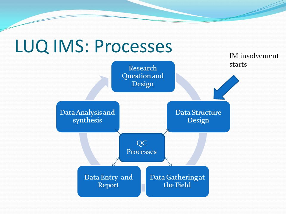 LUQ IMS: Processes Research Question and Design Data Structure Design Data Gathering at the Field Data Entry and Report Data Analysis and synthesis QC