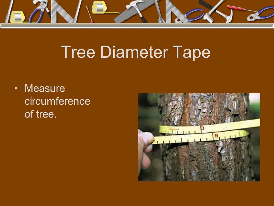 Tree Diameter Tape Measure circumference of tree.