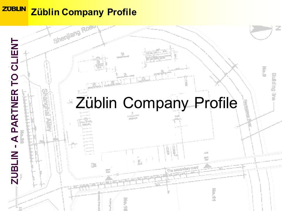 Züblin Company Profile