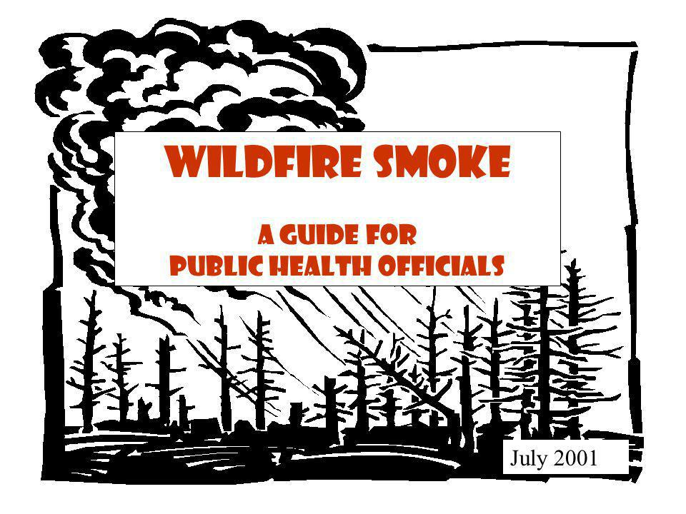 Composition of Smoke Carbon dioxide, water vapor, carbon monoxide, particulate matter, hydrocarbons and other organics, nitrogen oxides and trace minerals.