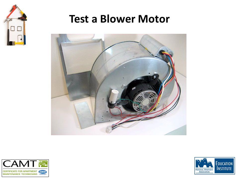 Test a Blower Motor