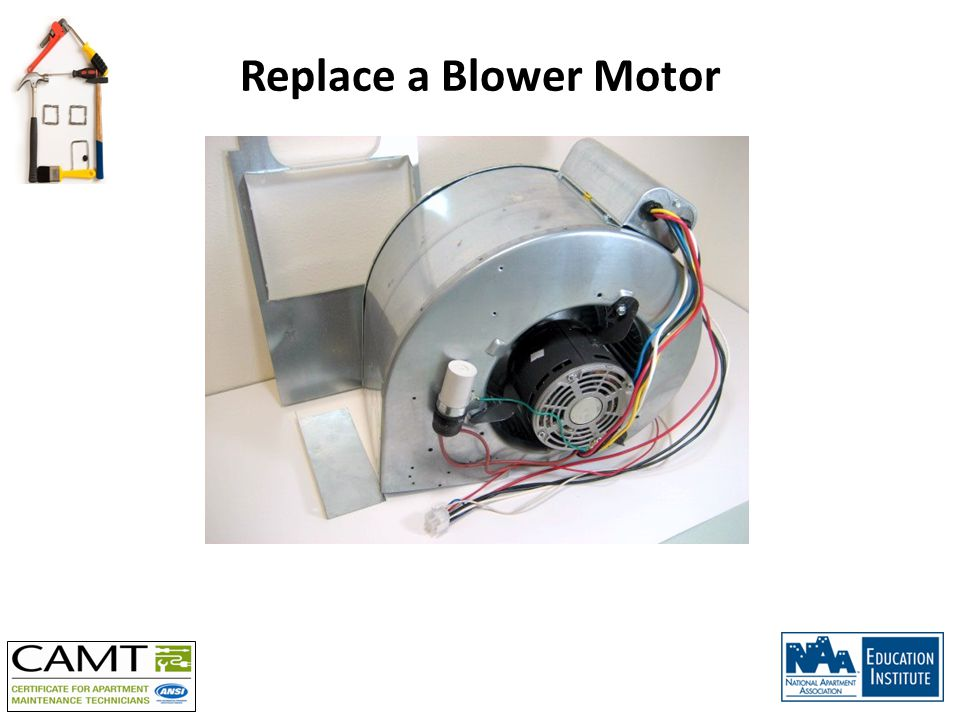 Replace a Blower Motor