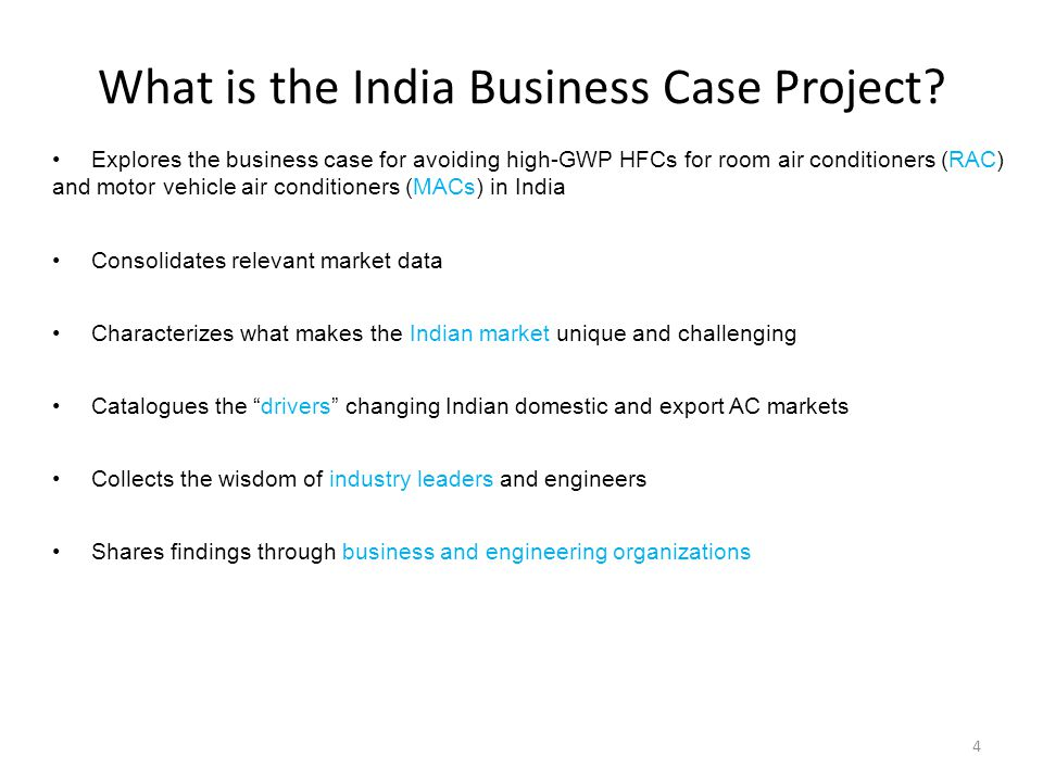 What is the India Business Case Project.