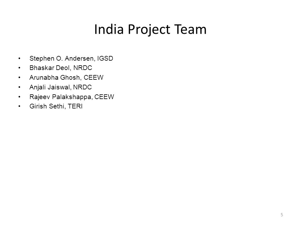 India Project Team Stephen O.